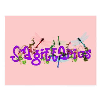 Carte Postale Fleurs de Sagittaire