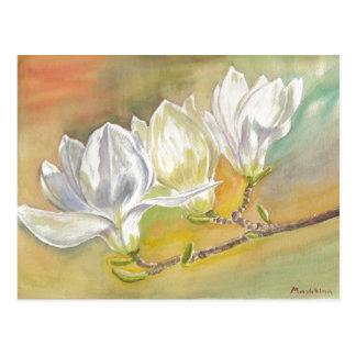 Carte Postale Floraison de magnolia. Aquarelle par E.Mashkina.