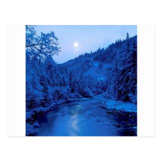 Carte Postale Forêt légère de Scott Klamath de lune de rivière