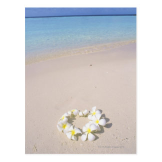 Carte Postale Frangipani sur la plage