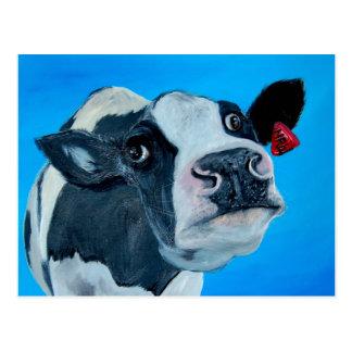 Carte Postale fresian fouineur de vache à art