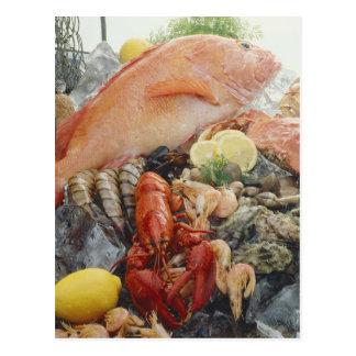 Carte Postale Fruits de mer