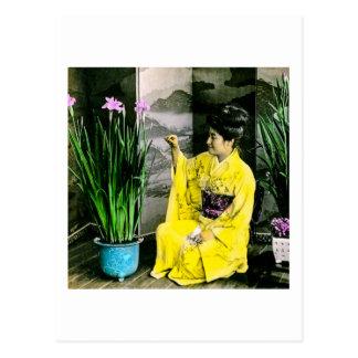 Carte Postale Geisha dans le kimono jaune arrangeant des fleurs