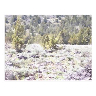 Carte Postale Genévriers et roche de lave dans l'aquarelle