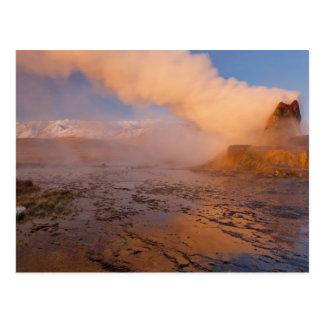 Carte Postale Geyser de mouche dans le désert noir de roche