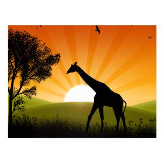 Carte Postale Girafe sur le mouvement