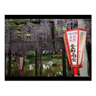 Carte Postale Glycines japonaises