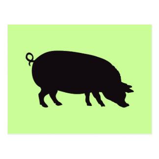 Carte Postale Gravure du bois vintage de porc