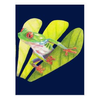 Carte Postale Grenouille d'arbre australienne colorée