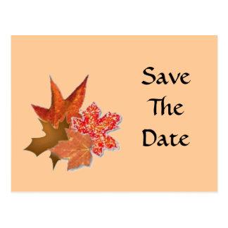 Carte Postale Groupe de feuille d'automne, SaveTheDate