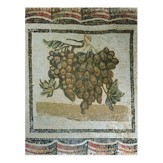 Carte Postale Groupe de raisins blancs, mosaïque romaine