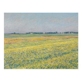 Carte Postale Gustave Caillebotte - la plaine de Gennevilliers
