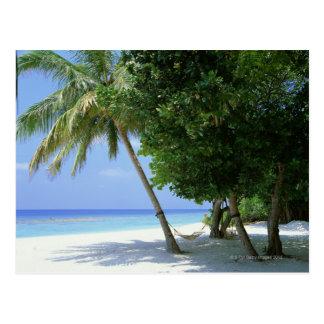 Carte Postale Hamac et palmier