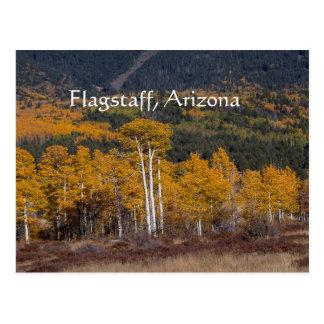 Carte Postale Hampe de drapeaux de prairie de cerf, Arizona