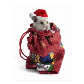 Carte Postale Hamster du père noël