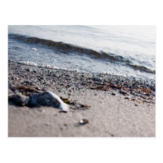 Carte Postale Haut étroit de plage