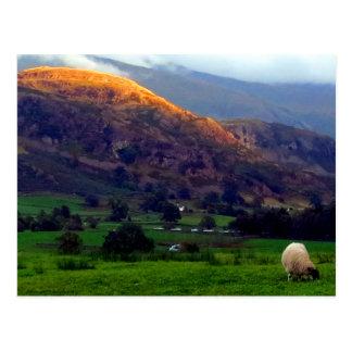 Carte Postale Haut Rigg Cumbria