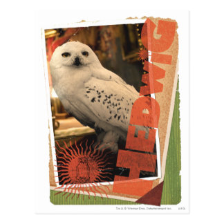 Carte Postale Hedwig 1