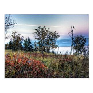 Carte Postale Herbe d'automne
