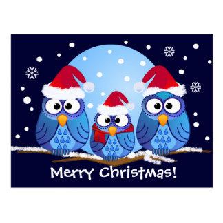 Carte Postale Hiboux avec des casquettes de Père Noël