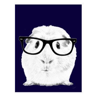 Carte Postale Hippie Pigster