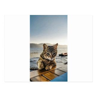 """Carte Postale """"Ici je suis"""" dit le chat"""