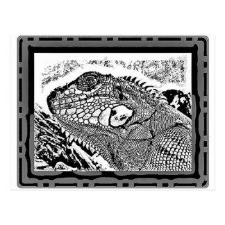 Carte Postale Iguane black/white