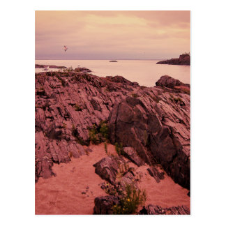 Carte Postale Île de mouette
