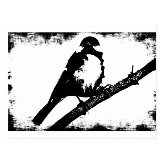 Carte Postale Image noire et blanche d'oiseau