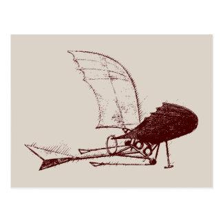 Carte Postale insecte