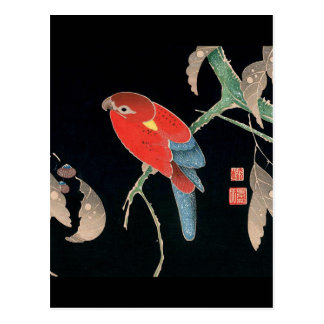 Carte Postale Itoh Jakuchu , 伊藤若冲、檪に鸚哥図