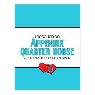 Carte Postale J'ai secouru un cheval de quart d'annexe (le