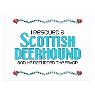 Carte Postale J'ai secouru un limier écossais (le chien