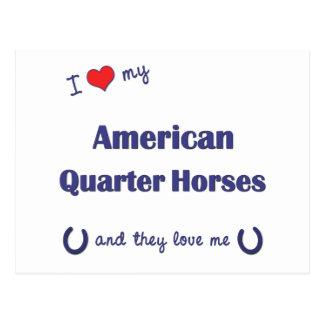 Carte Postale J'aime mes chevaux quarts américains (chevaux