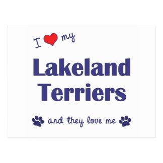 Carte Postale J'aime mes terriers de région des lacs (les chiens