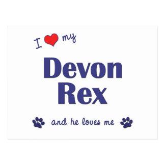 Carte Postale J'aime mon Devon Rex (le chat masculin)