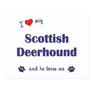Carte Postale J'aime mon limier écossais (le chien masculin)