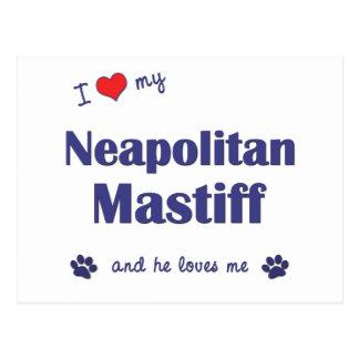 Carte Postale J'aime mon mastiff napolitain (le chien masculin)