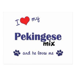 Carte Postale J'aime mon mélange de Pekingese (le chien