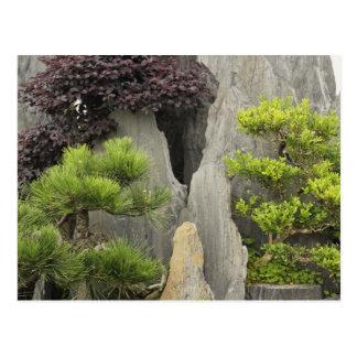 Carte Postale Jardin de la famille de Bao, Huangshan, Chine. 2