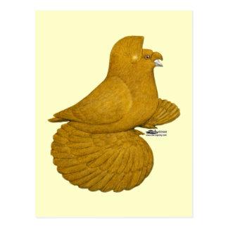 Carte Postale Jaune de pigeon de trompettiste