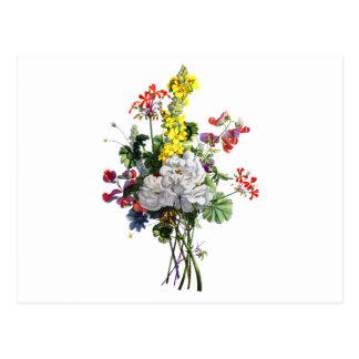 Carte Postale Jean Louis Prevost rose et bouquet de bégonia