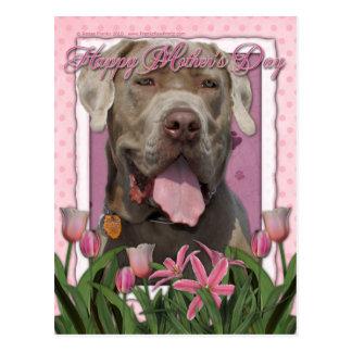 Carte Postale Jour de mères - tulipes roses - mastiff - fureteur
