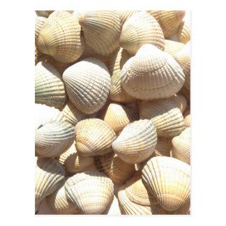 Carte Postale Jour heureux de Father´s, coquillages, plage d'été