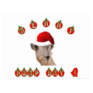 Carte Postale Joyeux chameau de journée en milieu de semaine de