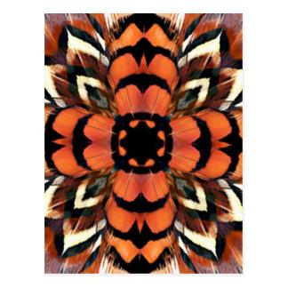 Carte Postale Kaléidoscope de plume de faisan