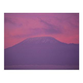 Carte Postale Kilimanjaro à l'aube