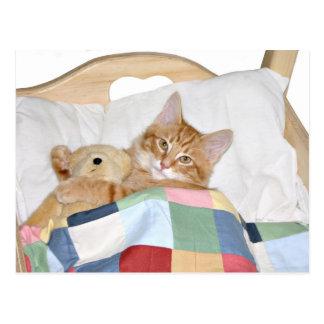 Carte Postale Kitty dormant avec le nounours