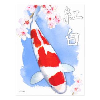 Carte Postale Kohaku Koi