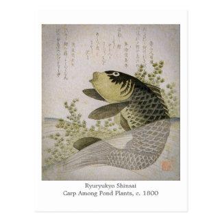 Carte Postale La carpe de Koi parmi l'étang plante l'art de